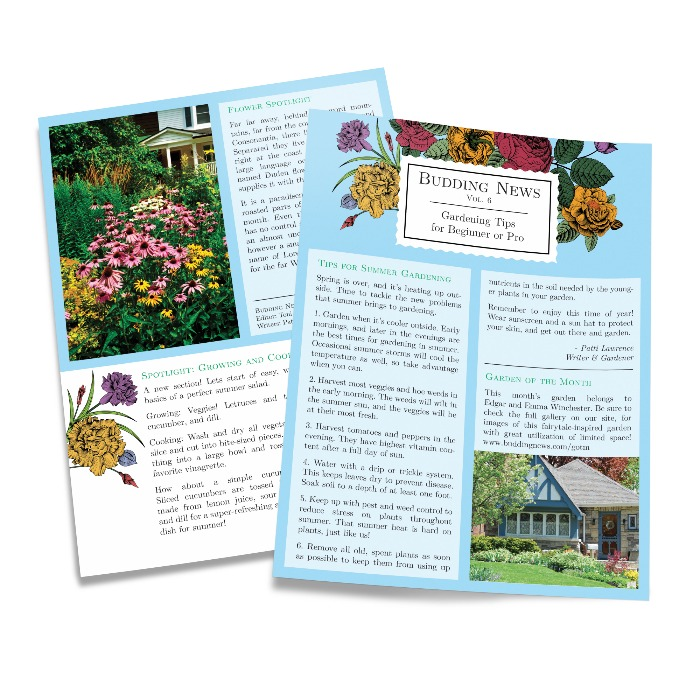 Single Sheet Newsletters
